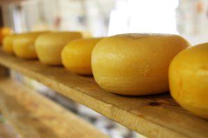 harzer käse abnehmen